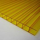 вид поликарбоната - желтый
